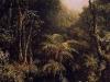 00003-brazilian_forest-1864