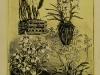 00022-kert-1919-mumelleklet